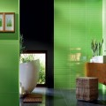 COLOUR GREEN